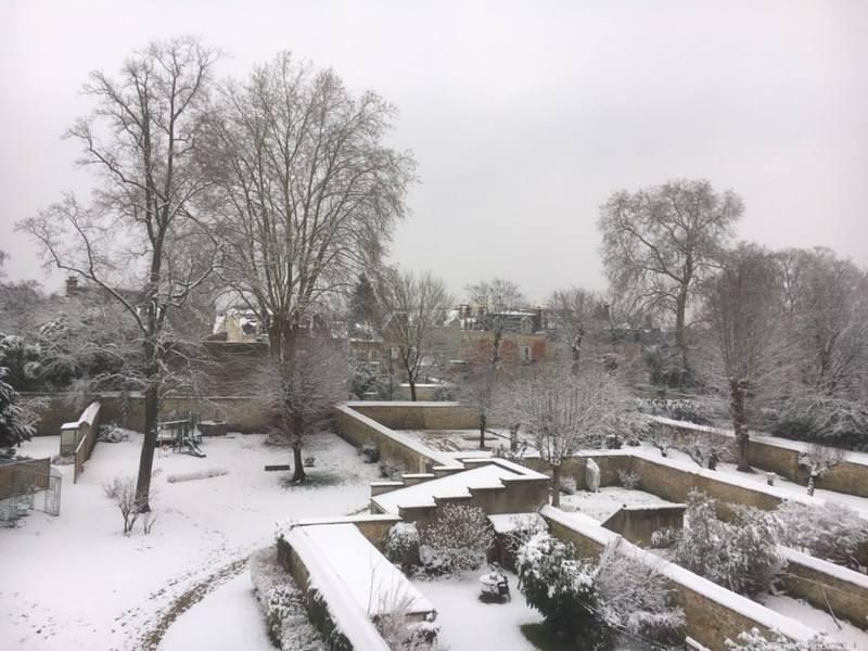 La neige à Fontainebleau